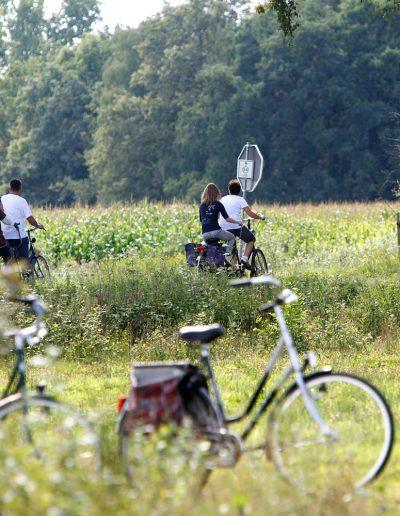 Brummen-fietsen-in-Tonden